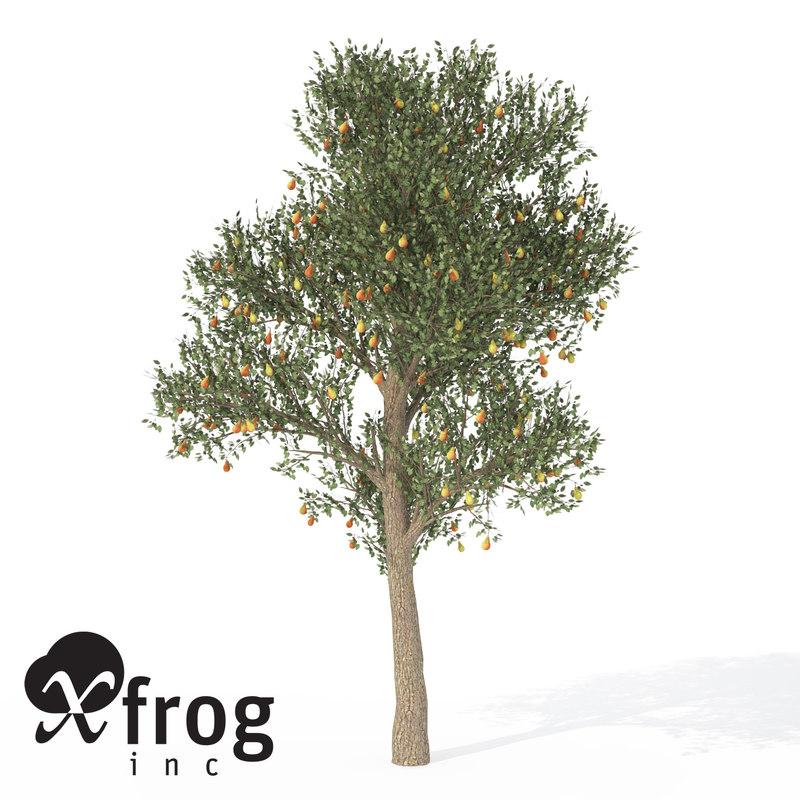 xfrogplants pear tree 3d max