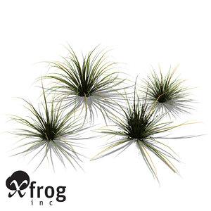 xfrogplants carex spec plant 3d 3ds