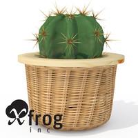 3d xfrogplants electrode cactus plant