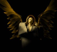 3d max angel winged