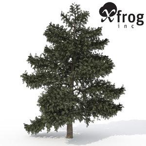 3d xfrogplants atlas cedar tree model