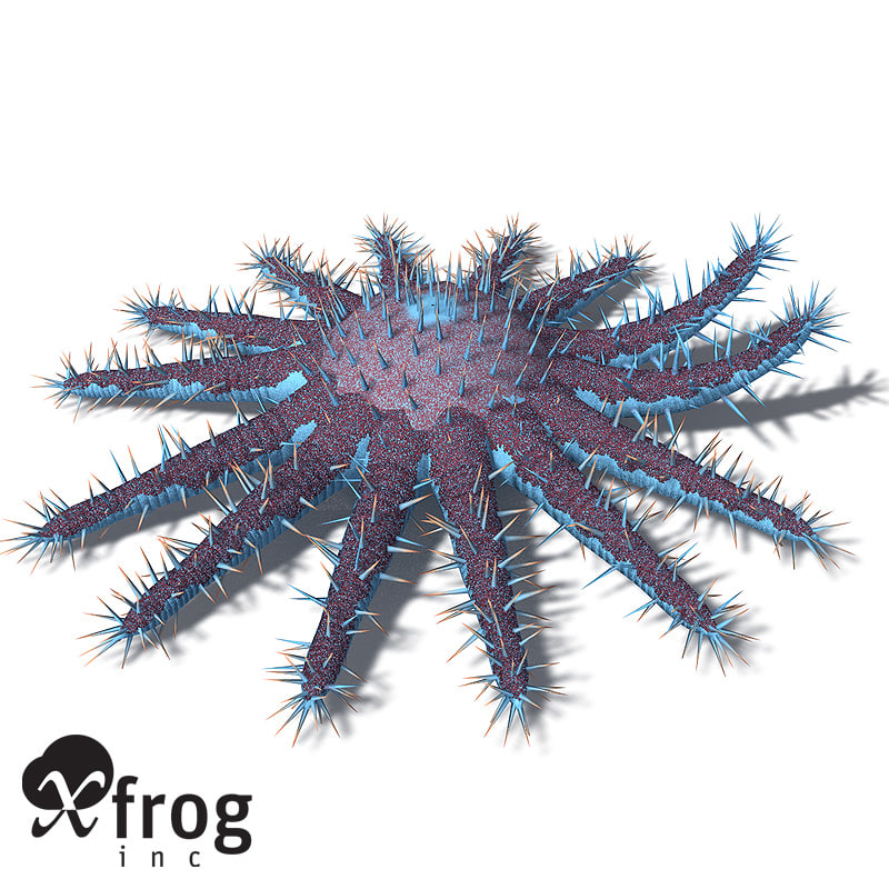 xfrogplants crown-of-thorns starfish plant 3d max