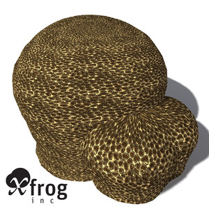 xfrogplants groved mosaic coral 3d model
