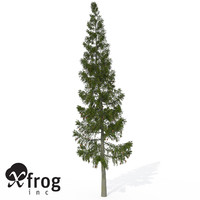 xfrogplants grand fir tree 3d 3ds