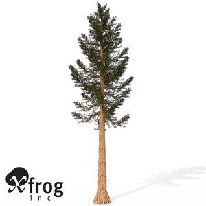 giant sequoia tree planted 3d model