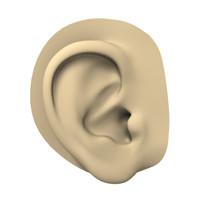 Ear - human