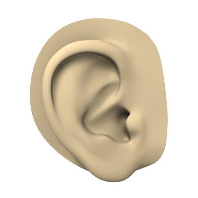 human ear max