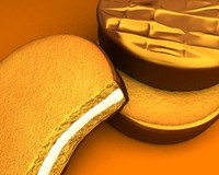 chocolate biscuit 3d max