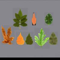 leaf opacity 3d max