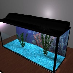 fish tank max