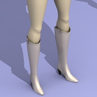 3d shoe boots