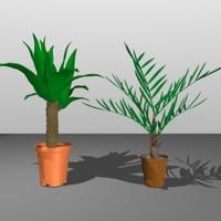 palm trees 3d obj