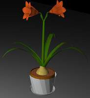 3ds max bulbons plant flower hippeastrum