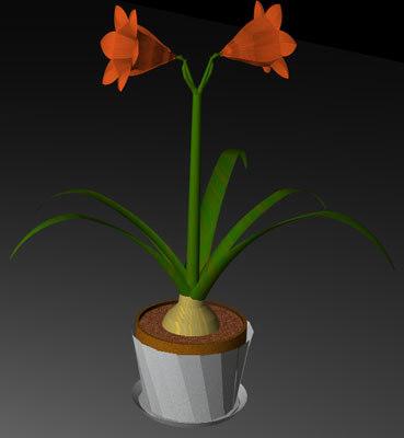 3ds max bulbons plant flower hippeastrum