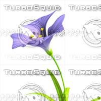 flower.rar