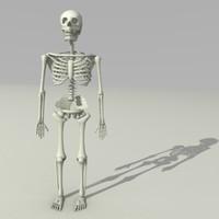blend skeleton