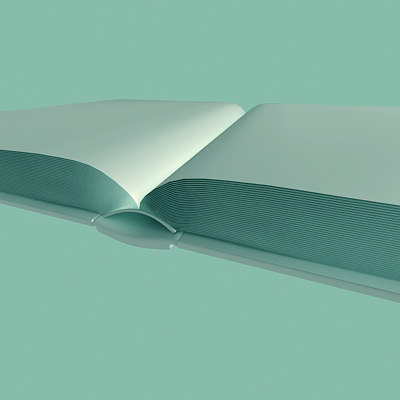 opened book 3d model