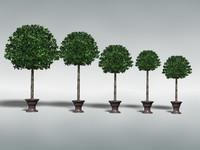 TreeDecorative01_High.zip