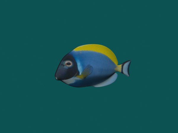 fish small 3ds
