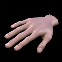 hand arm 3d max