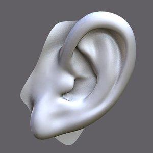 perfect ear 3d model
