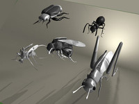 3d model insects beetle ant wasp