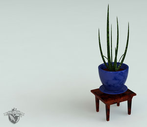 3d end table decorative aloe