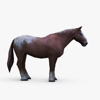 draft horse brabant 3d model