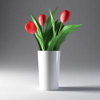 3d tulip flower model