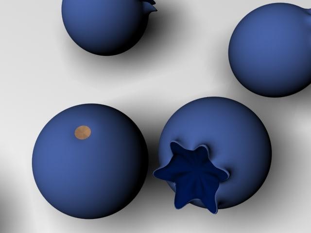 3d blueberries bilberries model