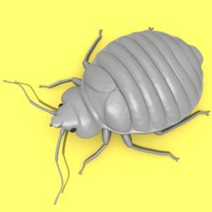 bedbug insect max