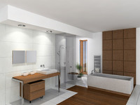 max modern bathroom shower