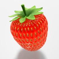 maya strawberry berry