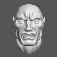 male_head_0001.obj