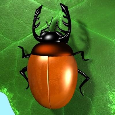 3d max beetle