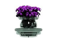 flowers in vase.max