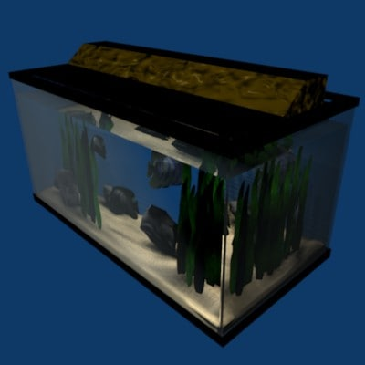 3d aquarium fish aquatic model