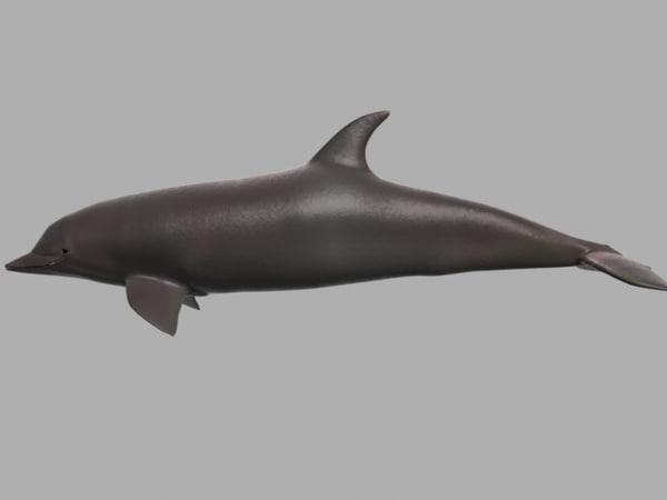 dolphin 3d lwo