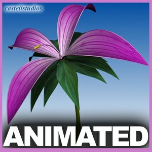 3d model realistic flower animation open