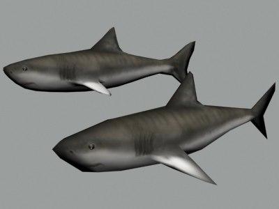 maya polygonal shark