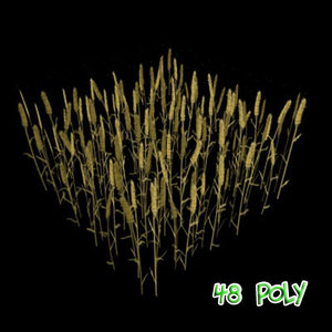 3ds max wheat field