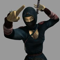 3d female asian ninja akiko