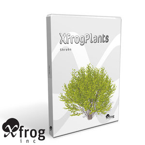 shrubs dvd plant 3d model
