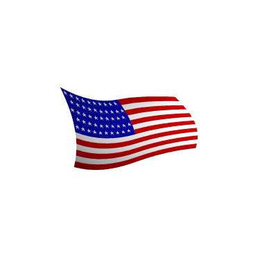 free american flag 3d model