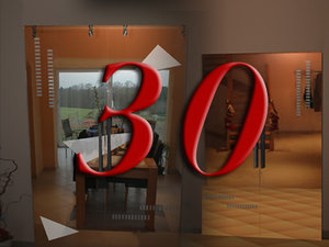 glass door 30 3d model