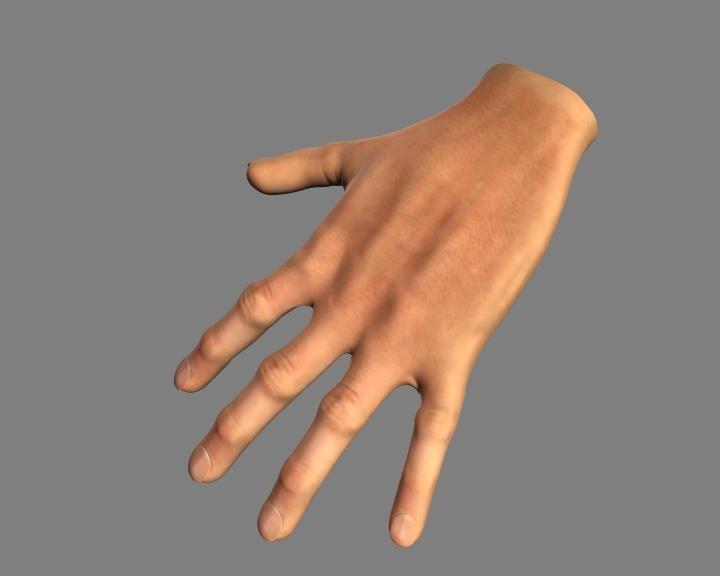 hand 3d obj