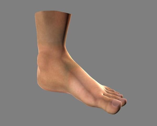 3d foot model