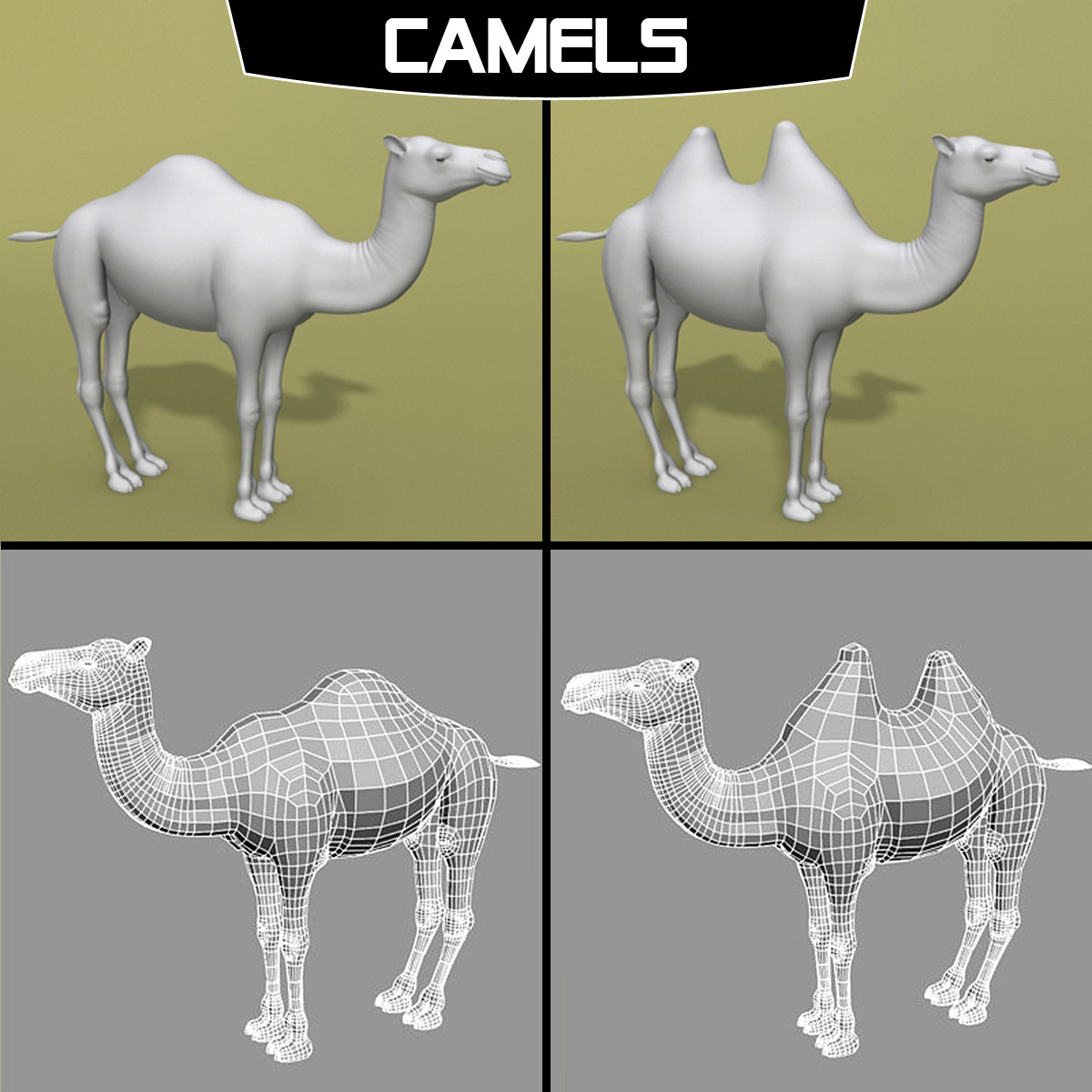 polygonal camel 3d model