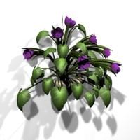 3d plant heart flowers