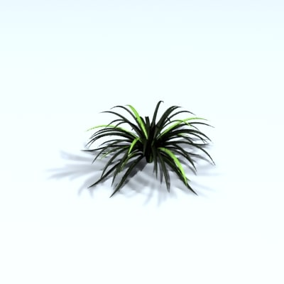 spikey plant 3d model